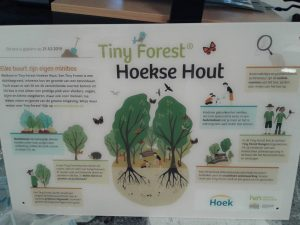 Tiny Forest Hoekse Hout